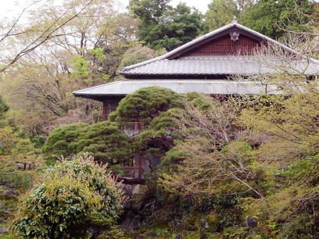 170409_mishima004.jpg